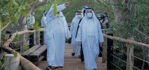 Kalba gets another mangrove sanctuary