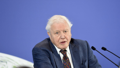 David Attenborough named COP26 People's Advocate