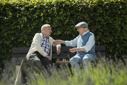 Restoring a Sense of Belonging: The Unsung Importance of Casual Relationships for Older Adults