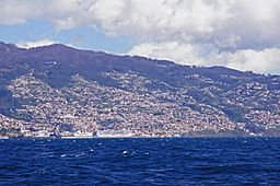 Madeira Islands Facts for Kids