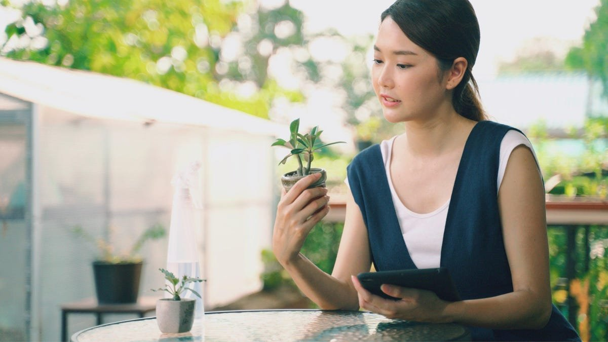 Track Your Plant Care With One of These Three Methods