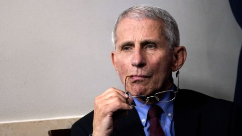 Dr. Fauci: Pandemic Exposed 'the Undeniable Effects of Racism'