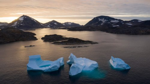 Million-Year-Old Plant Fossils Contain a Warning About Greenland's Ice