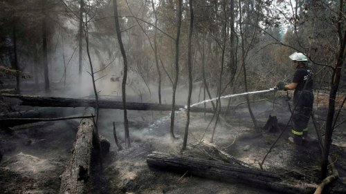 Scientists Found a 'Magical' Solution to Fight Dangerous Zombie Fires