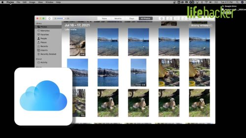 How to Organize All Your iCloud Photos