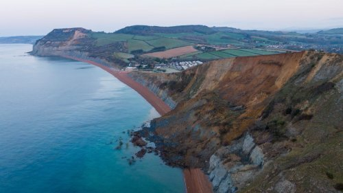 Massive Rockfall Along Britain's Jurassic Coast Could Be a Boon to Fossil Hunters