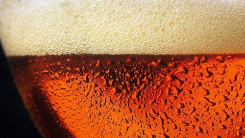 The brief yet meaningful life of beer bubbles