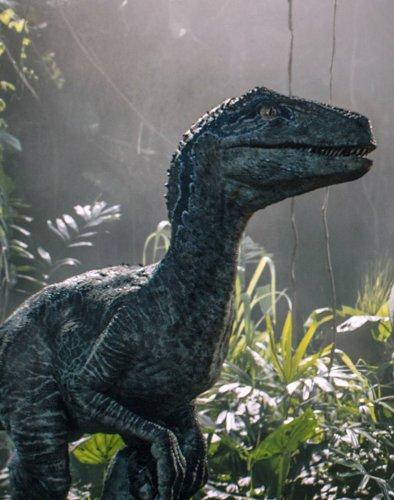 """Überfälliges Debüt in """"Jurassic World 3"""": Das sind die 7 neuen Dino-Arten im Film"""