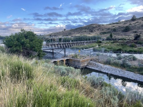 'There Are No Winners Here': Drought in the Klamath Basin Inflames a Decades-Old War Over Water and Fish - Inside Climate News