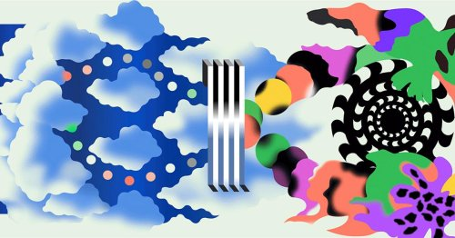 Psychedelics open a new window on the mechanisms of perception