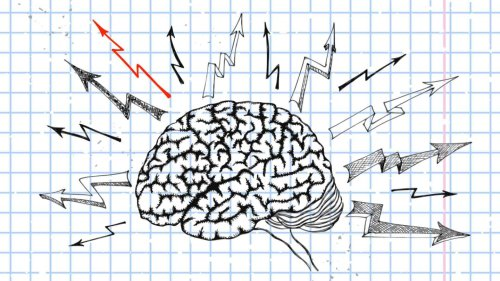 Beyond Working Hard: What Growth Mindset Teaches Us About Our Brains | KQED