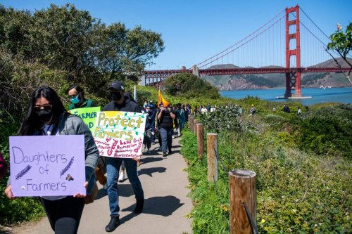 'The Same Hands That Feed Us': San Franciscans Rally in Solidarity with India's Farmers Protest | KQED