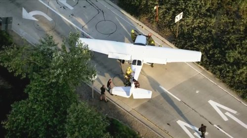 Plane that made emergency landing on 101 Freeway in Agoura Hills experienced loss of oil pressure, owners say