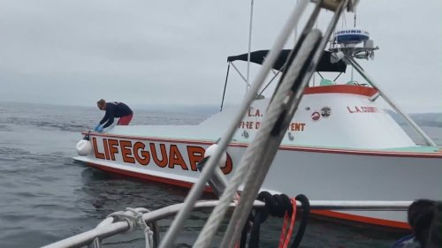 'It just wasn't her time': Sailor saves woman floating off Marina Del Rey coast for 12 hours