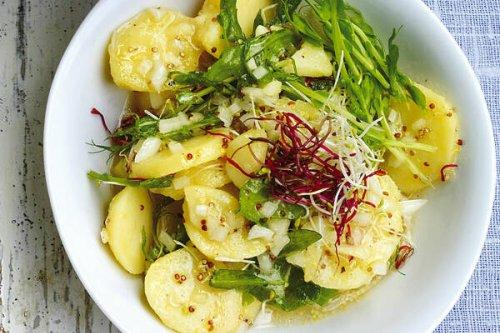 Fleischlos gut: Die besten Rezepte für vegetarische Salate