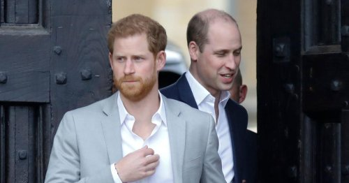 Williams & Harrys Forderung bei Statuen-Enthüllung für Diana sorgt für Stirnrunzeln