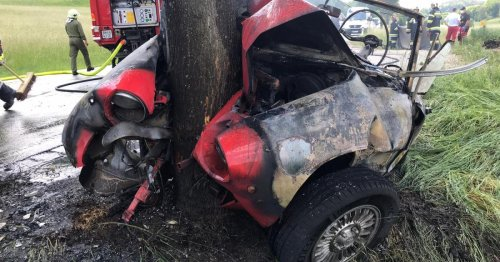 Frontal gegen Baum: Schrecklicher Unfall in Alland fordert Todesopfer