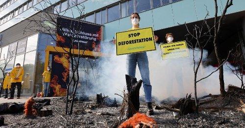 Schutz für Regenwald: Greenpeace-Protest vor Milka-Zentrale