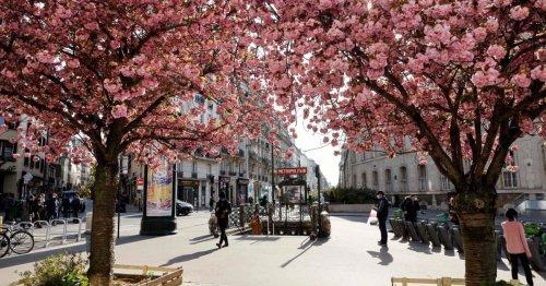 """Paris will eine """"Dorfmetropole"""" werden"""