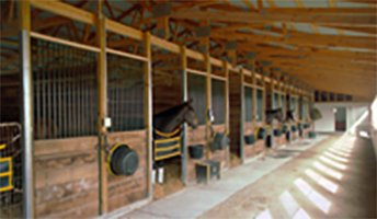 Keeneland to build six new barns, make additional enhancements at The Thoroughbred Center