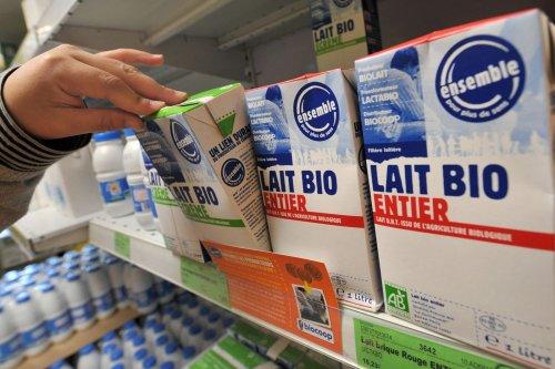 Les consommateurs se détournent du lait bio