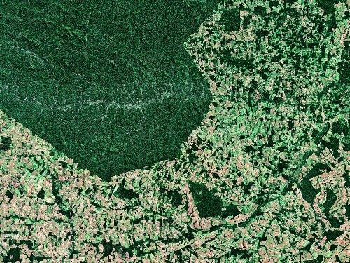 Climat: l'Amazonie au cœur des inquiétudes