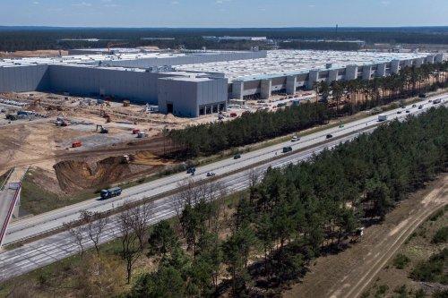 Allemagne : dans le Brandebourg, la future usine Tesla patine