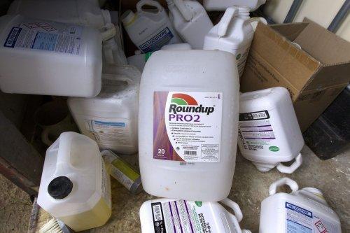 Glyphosate : l'Europe lance des consultations sur l'avenir de l'herbicide