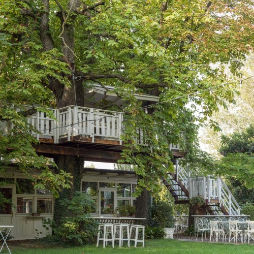 Bologna's Treetop Sanctuary