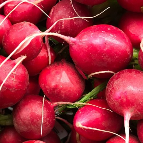 Radishes: The Perfect Anti-Stress Food to Eat… Right Now!