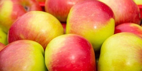 Le mele rosa dei Monti Sibillini - La Cucina Italiana