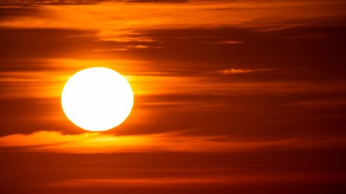 UK Could Face 40°C Heatwaves Within 10 Years, Expert Warns