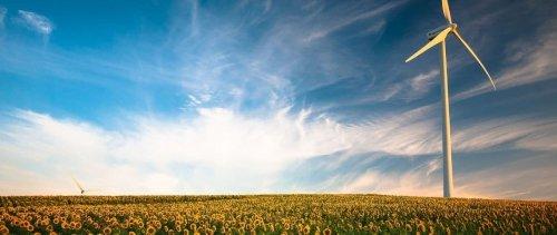 Transition écologique : les marques peuvent-elles sauver le monde ?