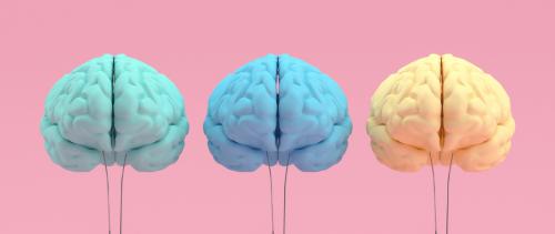 Comment Parcoursup organise sans le vouloir la fuite des cerveaux étudiants