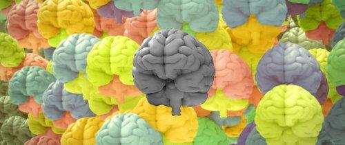 Il devient urgent de considérer la neurotypie au travail