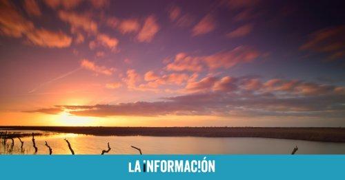 España no protegió Doñana: la justicia de la UE dicta que no tomó medidas