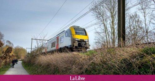 Intempéries: le trafic ferroviaire est interrompu sur deux lignes