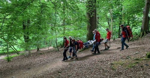 Woman, 75, rescued after falling and hitting head in woods