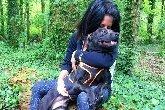 Mort d'Elisa Pilarski : une contre-expertise vétérinaire sera menée sur le chien Curtis