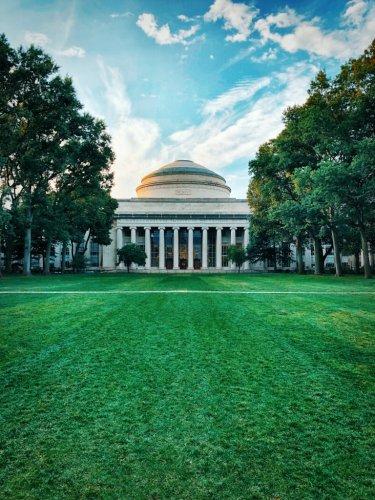 The Harvard Cheating Scandal Gone Global  