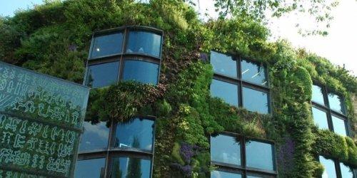 Végétaliser pour mener à bien la transition écologique dans les territoires : qu'attendent les régions pour s'en emparer ?