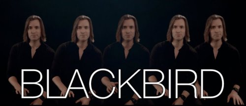 A Low Bass Vocal Cover of 'Blackbird' by The Beatles