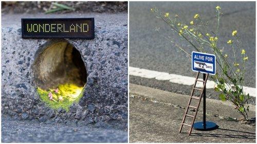 Amusing Street Signs Marking Tiny Locations