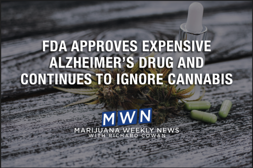 FDA Approves Expensive Alzheimer's Drug And Continues To Ignore Cannabis