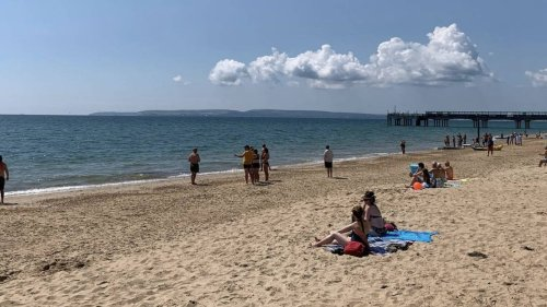 Bournemouth beach-goers evacuated after 'large marine animal' spotted in sea