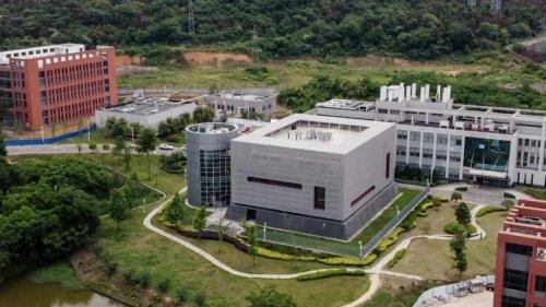 Origines du Covid-19 : une responsable du labo de Wuhan rejette à nouveau les accusations