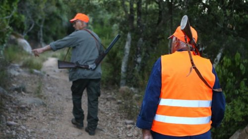 """Manifestations pour la """"chasse traditionnelle"""" : les chasseurs sont-ils vraiment représentatifs de la """"ruralité"""" ?"""