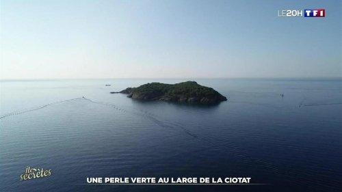 L'Île Verte, une perle au large de La Ciotat