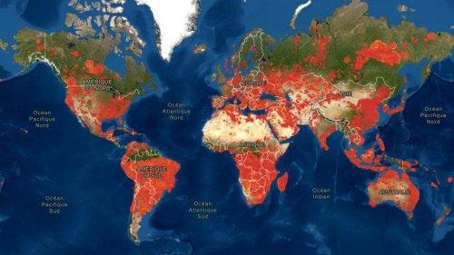 CARTE - Les régions du monde en proie aux incendies