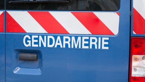 Loiret : un exploitant agricole interpellé, soupçonné de mauvais traitement sur près de 150 animaux